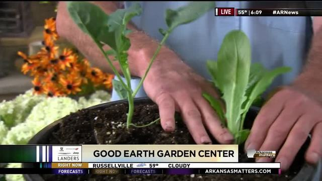 Good Earth Garden Center: Early Blooms