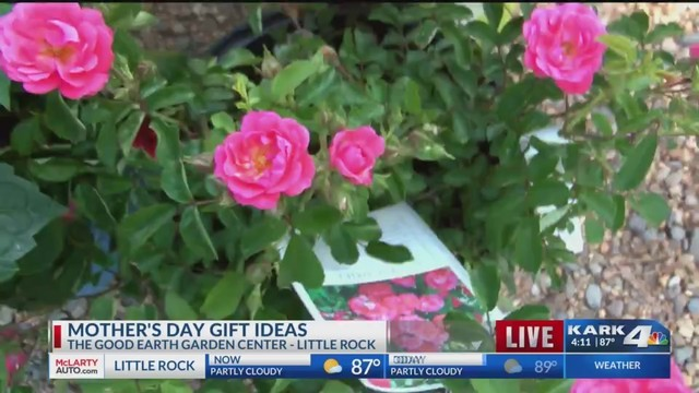 gift ideas for mom at the good earth garden center - Good Earth Garden Center