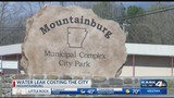 Severe water leak costing the City of Mountainburg over $35K