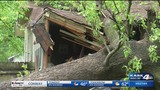 Massive tree traps 92-year-old woman inside home&#x3b; stranger comes to rescue