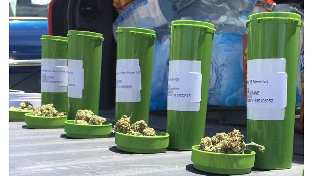 169 pounds of medical marijuana sold in Arkansas' first month of sales